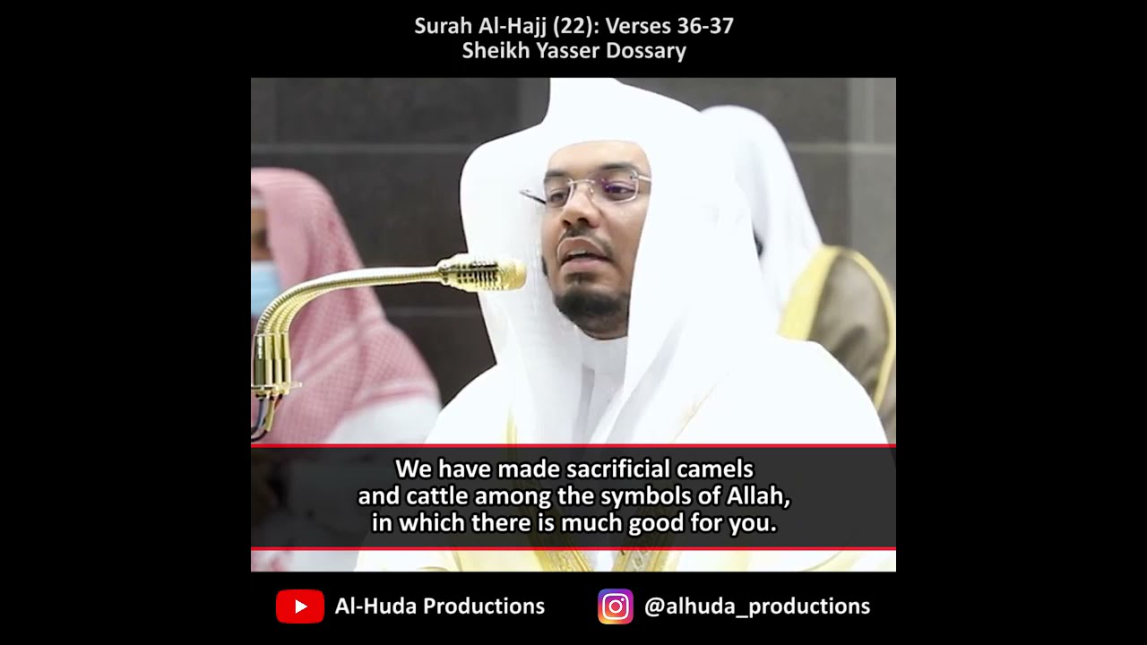 Their meat will not reach Allah, nor will their blood   Verses About Sacrifice #shorts