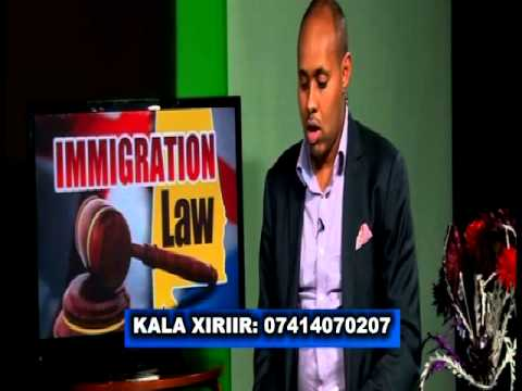IMMIGRATION LAW FULL VERSION