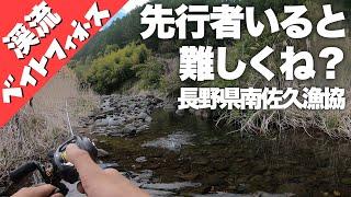 【渓流ベイトフィネス 】先行者いると難しくないですか?それでもなんとか釣る男。長野県南佐久漁協