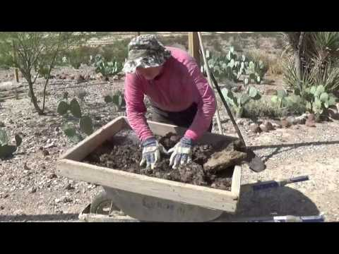 V-log, 8-10-16: Chicken compost, chopping catsclaw, berm & basin rainwater