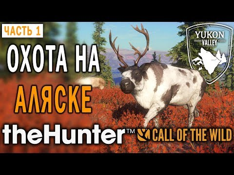 theHunter Call of the Wild #1 🐺 - Охота на Аляске - Новый Заказник \