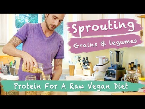 Sprouting Lentils, Grains And Beans: Protein For A Raw Vegan Diet