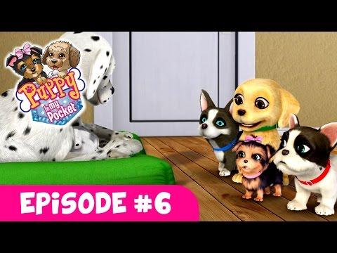 Puppy In My Pocket - Webisode #6