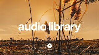 Guts and Bourbon – Kevin MacLeod (No Copyright Music)