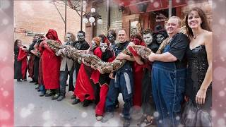 GIANT SNAKE ON EARTH 2018 - The best on YouTube