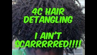 Felicia Leatherwood Brush vs Wet Brush Comb | 4C Hair Detangling and Flat Twist Tutorial (22)