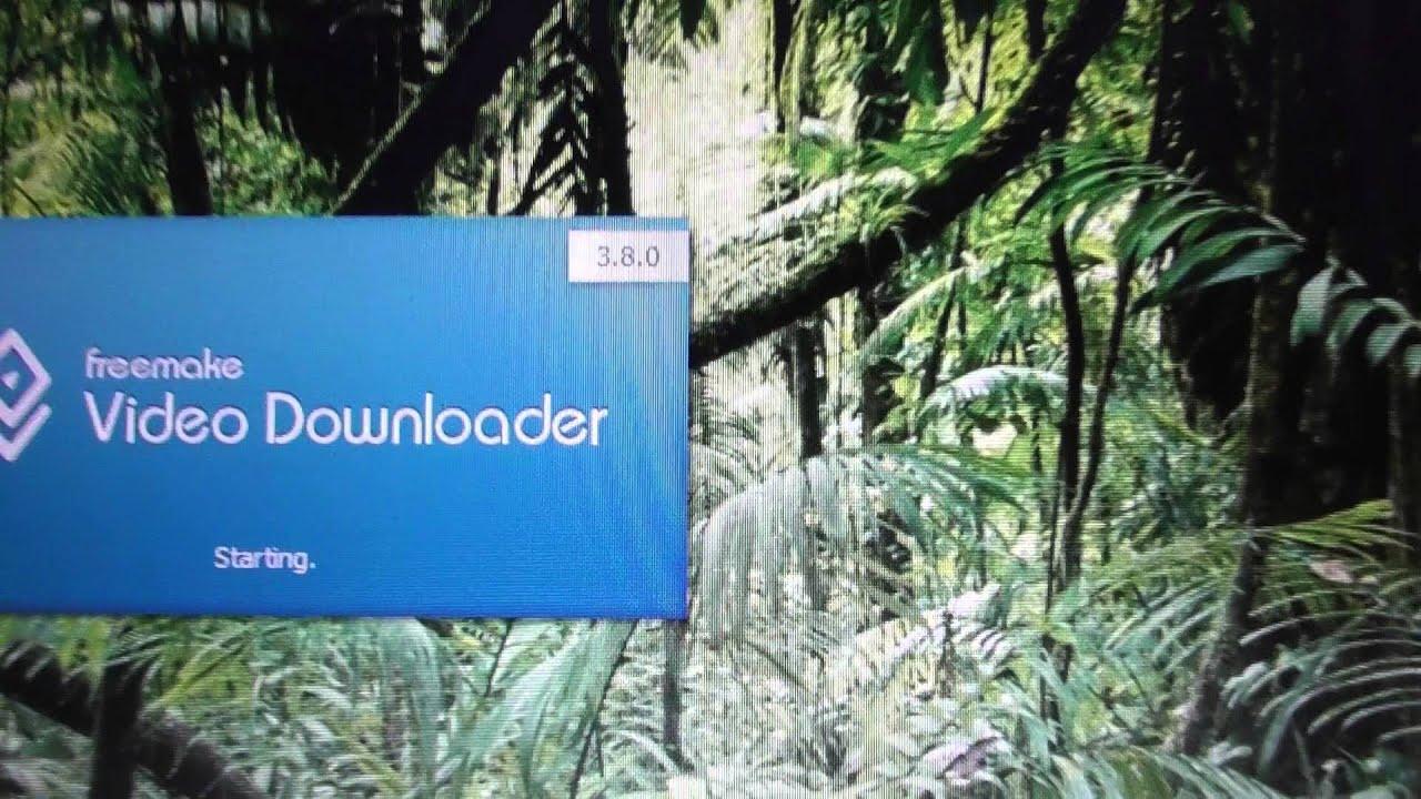 freemake video downloader error