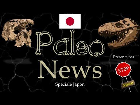 Paléonews- Spéciale Japon