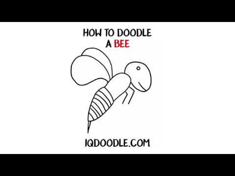 How to Draw a Bee (drawing tips)