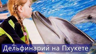 Дельфинарий на Пхукете | Шоу дельфинов Пхукет | Цены | Отзывы | Авитип