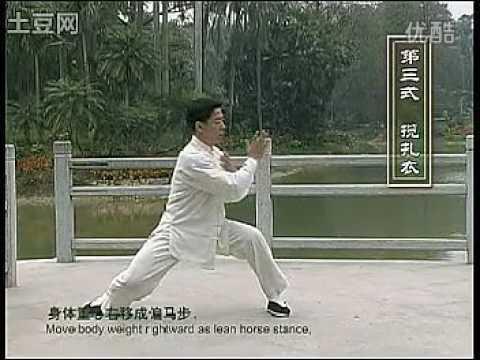 陈式太极拳83式教学_陈氏太极拳 王二平24式陈氏太极拳1 6式教学 - YouTube