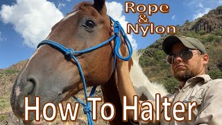 How to Halter a Horse -Rope & Nylon- BTSR