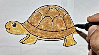 Tortoise  Draw tortoise   how to draw tortoise Easy way for kids