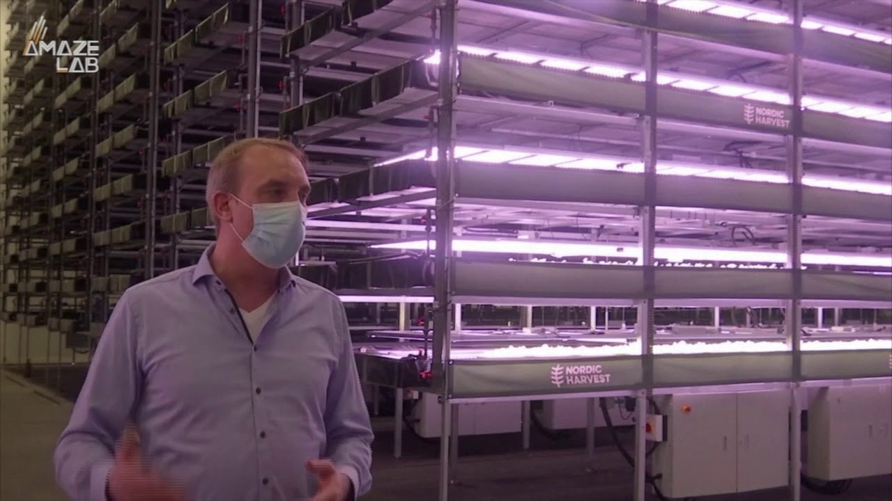 This Vertical Farm is Europe's Biggest and could be the Future of Farming