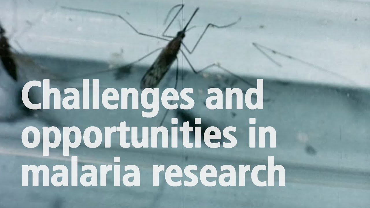 Download Challenges and opportunities in malaria research