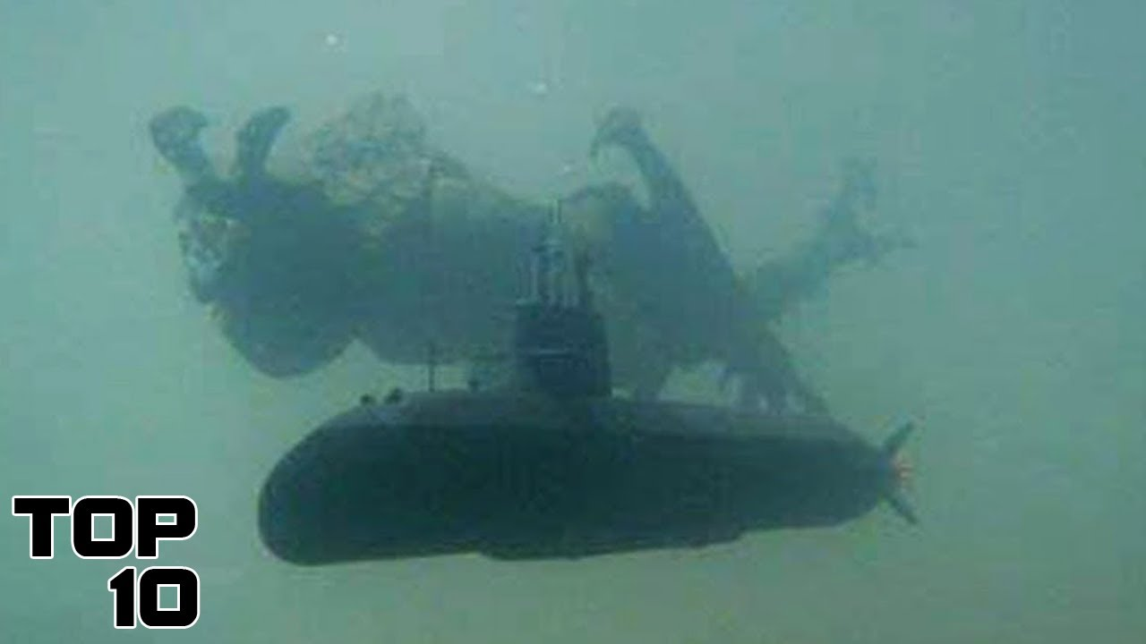 Top 10 Deep Sea Creatures Worse Than Your Nightmares   Marathon