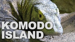 Komodo National Park, Home of the World's Largest Lizard (Komodo Dragon)