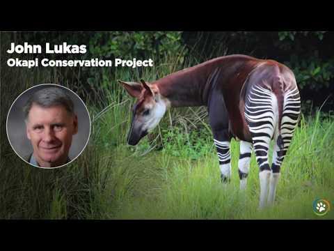WCN Fall Expo 2017 - Okapi Conservation Project- John Lukas