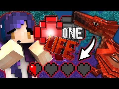 I HAVE HALF A HEART LEFT!!   Ep. 19   One Life Minecraft SMP