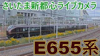 【さいたま新都心ライブカメラ】E655系なごみ団体臨時列車 仙台行