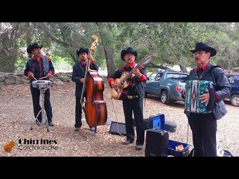Cuatro Milpas - Chirrines Con Tololoche Santa Paula CA818-290-4645