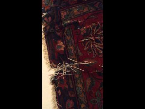 Austin Oriental Rug cleaning machine damage.