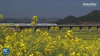 China's high-speed rail on fast track