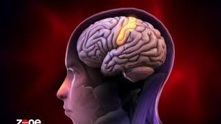 L'hypnose et thérapie brève par le SAMU et dans le domaine médical
