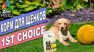 Корм для Щенков 1st Choice Puppy Chiot   Обзор корма для щенков   1st Choice Puppy Toy  review