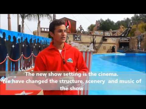 Los delfines en Mundomar Benidorm // Mundomar Benidorm  Dolphins