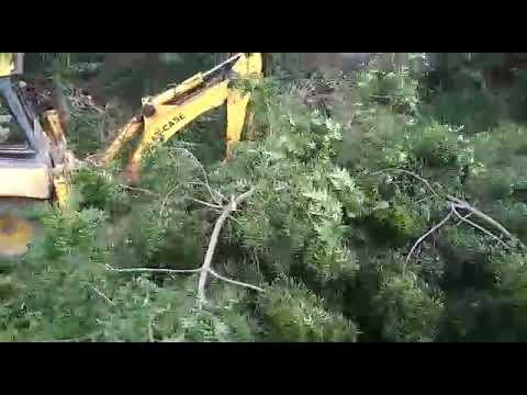Attack At My House At Vuyurru,  Vijayawada By Srikanth HDfc Bank Employee,  Vijayawadas. Su(1)