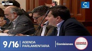 Sesión Comisión de Constitución 9 (19/07/19)