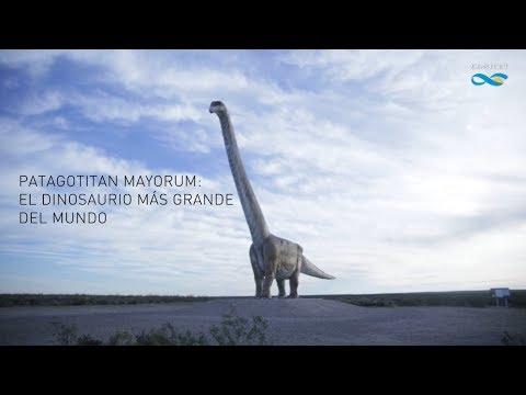 Patagotitán, el dinosaurio argentino que dejaba chiquito al Tiranosaurio