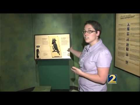 "Fernbank Museum of Natural History creates ""Wild Music"""