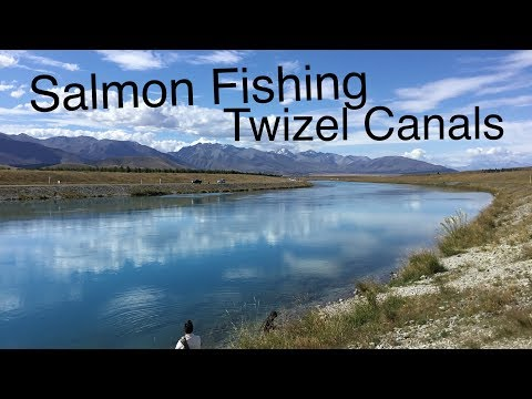 Fishing For Salmon In The Twizel Canals