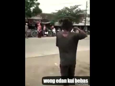 Wong edan kui bebas