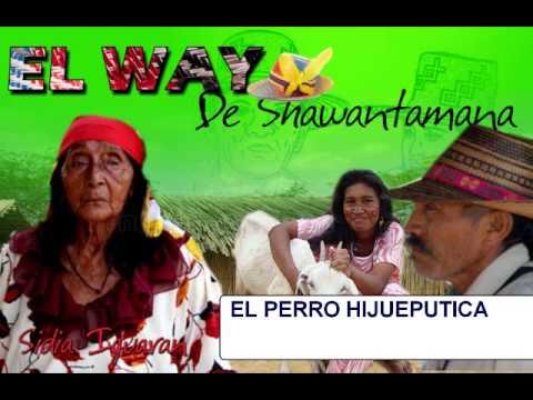 EL WAY DE SHAWANTAMANA EL PERRO HIJUEPUTICA