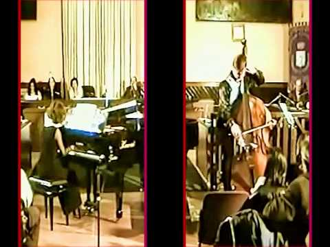 "VITO LIUZZI plays KOUSSEVITZKY ""Concerto"" 2nd movement in 3D !!!"