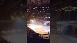 ледовое шоу Кармен в спб