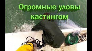 Огромные уловы на кастинговую сеть Cast net fishing big fish