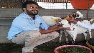 USA की नौकरी छोड़ गांव में बकरियां पाल रहा है साइंटिस्ट, ऐसे कमा रहा लाखों