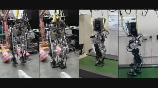 Energy Efficient Legged Robotics at Sandia Labs, Pt. 3