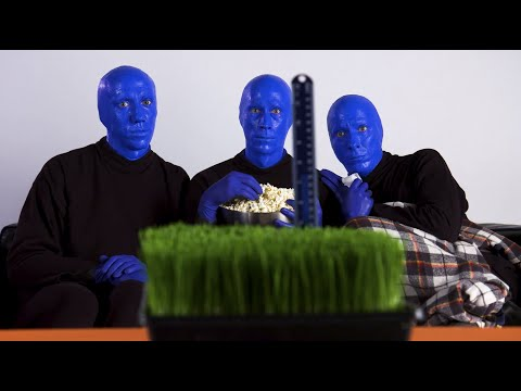 Try Not to Laugh Watching Funny Skits | Blue Man Group (Short Comedy Sketches)