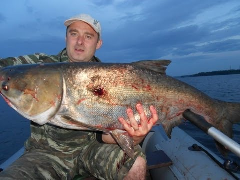 запреты на ловлю рыбы в десногорске