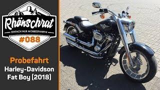 Probefahrt - Harley Davidson Fat Boy (2018) | Produktvorschlag an Harley | Blitzermarathon | #088