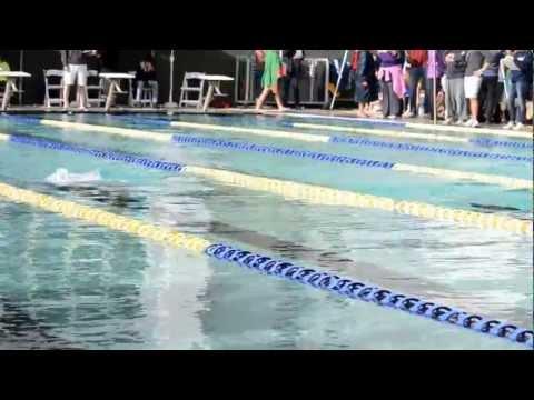Bermuda Swim Meet Dec 1 2012