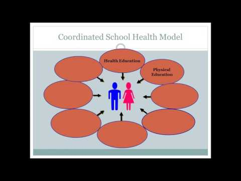 Evaluation, Implementation and Sustainability with CATCH onto Health Consortium