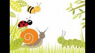 What is a bug. Cute preschooler answers.