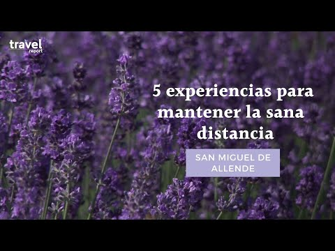 Redescubre San Miguel de Allende con sana distancia: 5 experiencias