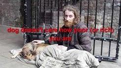 Stop Killing & Eating Dog Meat    nutrisource dog food coupons